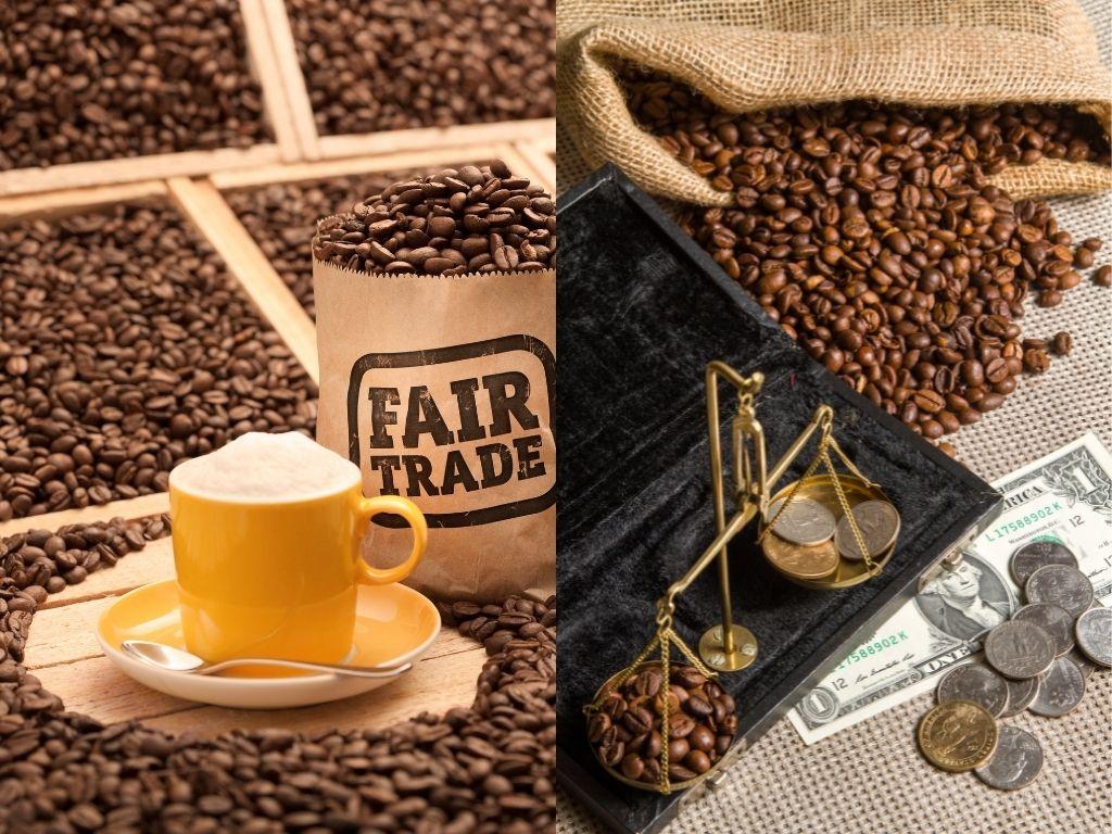 fair trade vs direct trade