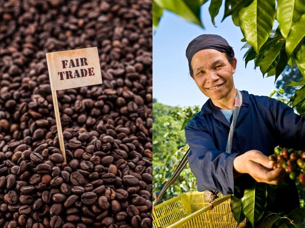 fair trade vs direct trade coffee